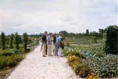 't Zand opening 1983